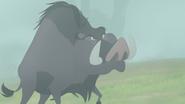 The-lost-gorillas (251)