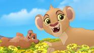Baboons (105)