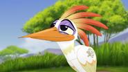 Ono-the-tickbird (493)