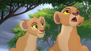 Baboons (62)
