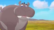 Follow-that-hippo (22)