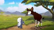 The-imaginary-okapi (501)