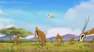 The-imaginary-okapi (149)