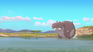 Follow-that-hippo (288)