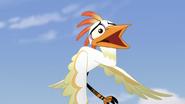 Ono-the-tickbird (305)