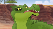 Let-sleeping-crocs-lie (212)
