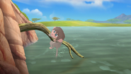 Baboons (85)