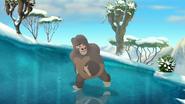 The-lost-gorillas (446)