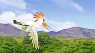 Ono-the-tickbird (323)