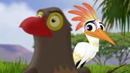 Ono-the-tickbird (339)