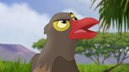 Ono-the-tickbird (333)