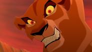 Lion-king2-disneyscreencaps.com-2551