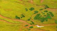 Overbushland