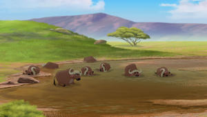 Vuruga Herd