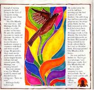 Birdcolors2