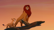 Lion-king2-disneyscreencaps.com-2063