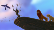 Lion-king2-disneyscreencaps-179