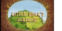 Little Bear's Surprise