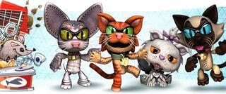 CatsCostumes