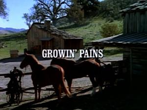 Title.growingpains