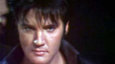 The Wonder of You ~ Elvis Presley