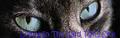 Thumbnail for version as of 02:23, September 25, 2011