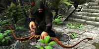 Kryeprift Himbal (Mowgli)