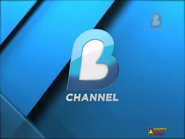 B-Channel 2013