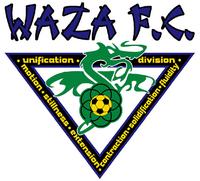 Detroit Waza logo