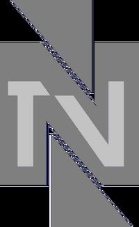 TVN 1993