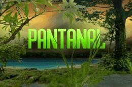 Novela Pantanal (2008)