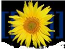 Mediawiki-logo