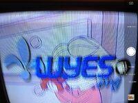 Wyes Kids 2001-pres