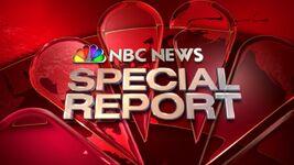NBC News Special Report Logo