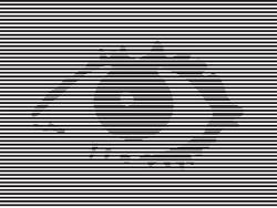 Big Brother 2001