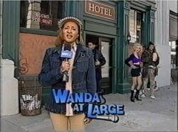 Wanda at Large title