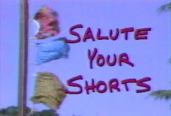 SaluteYOurShorts2