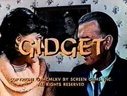 Gidget 1965a