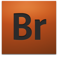 Adobe Bridge (2008-2010)