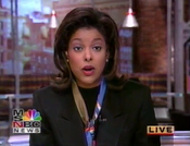 MSNBC1997bug