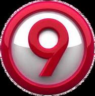 LogoCanalnueve2012-2013