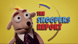 The Fuzz Snoopers Report