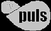 TVPuls2012