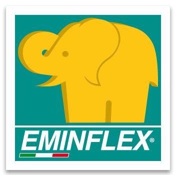 Eminflex 2013