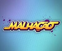 Malhação (13ª temporada)