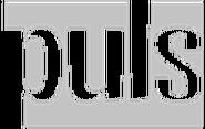 TVPuls2008