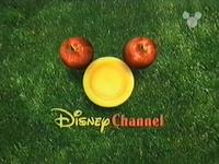 DisneyPicnic1999