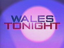 Wales Tonight 1994