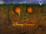 Disney Channel ID - Turnips (1999)