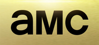 AMC 2013